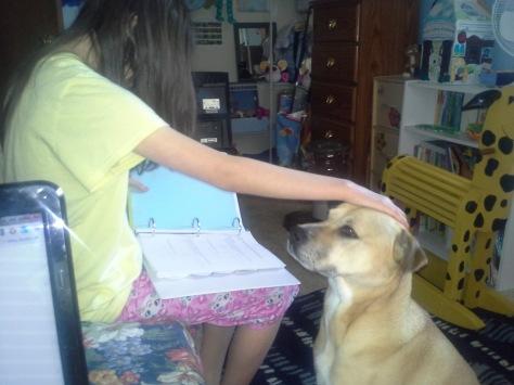 Jordan multitasking by studying and petting Jazzmin.